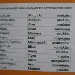 ΟΝΟΜΑΤΑ